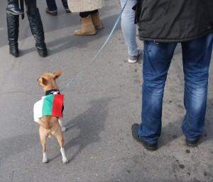 Protest-Sofia-9-030313