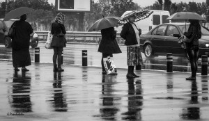 Rainy day 1  Sofia 160914
